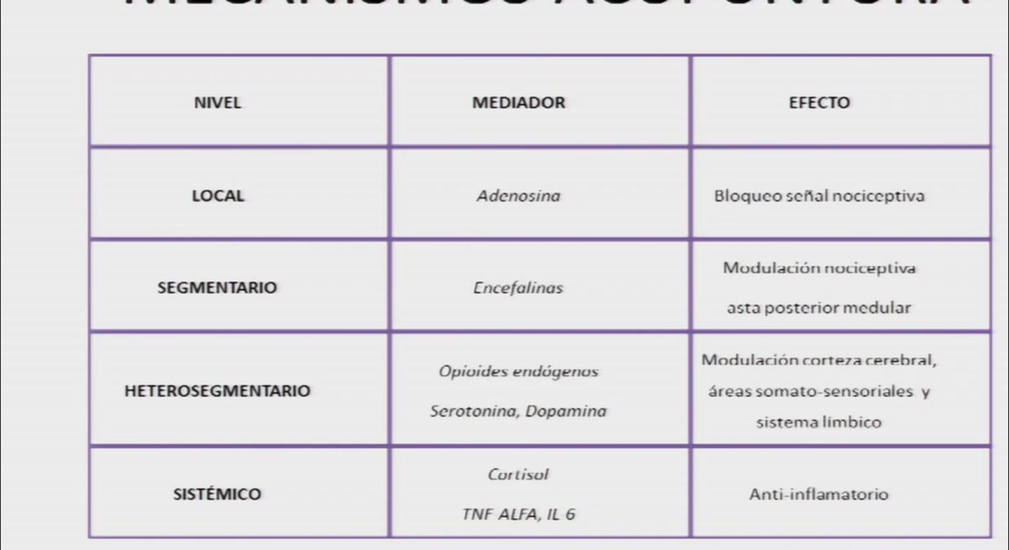 MECANISMOS BIOLOGICOS ACUPUNTURA